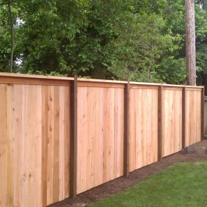 Redheart Fencing